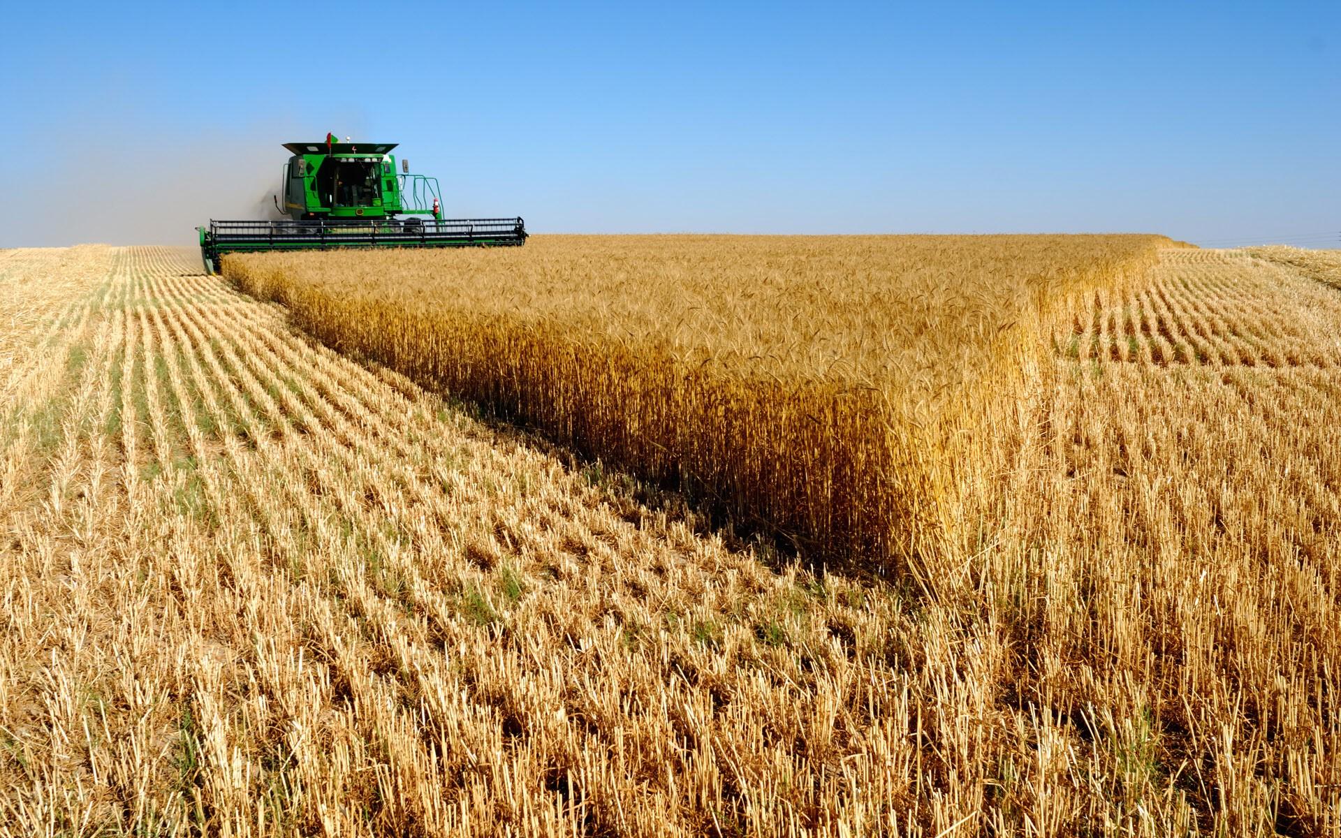 Logística deficitária desafia expansão do agronegócio sul-americano