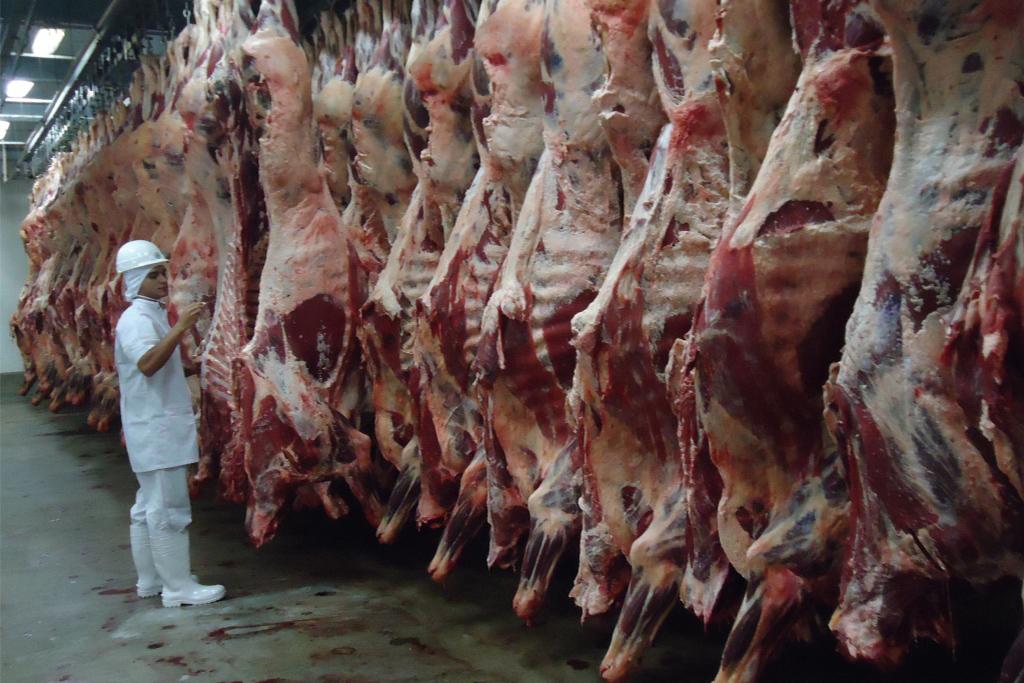 EUA liberam importação de carne bovina in natura do Brasil